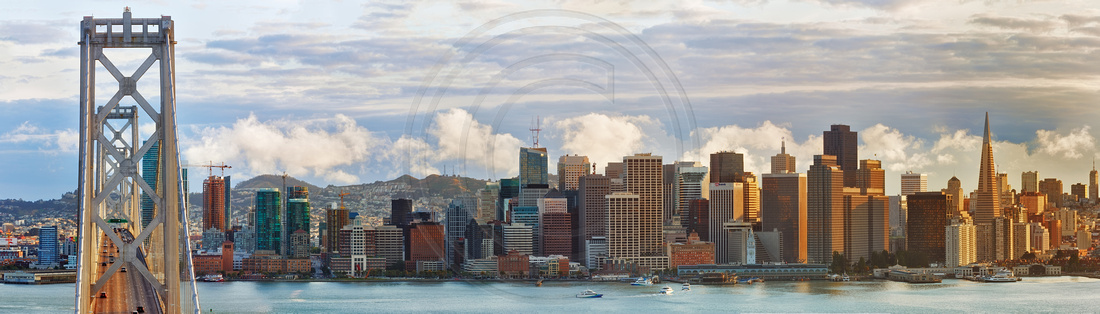 Vibrant City of San Francisco